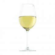 Nos vins blancs